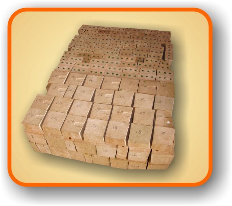 Refrattari forni a legna come costruirli for Mattoni refrattari per forno a legna